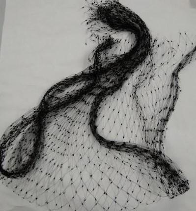 Hi Grade Biofloc Garden Nylon Black Anti Fish Net