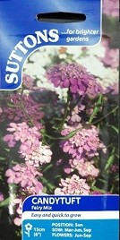 Suttons Candytuft Seeds