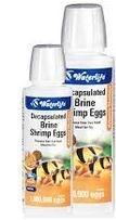 Waterlife Brine Eggs