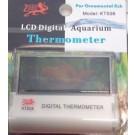 Transparent Digital Thermometer