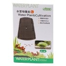 ISTA Water Plants Cultivation