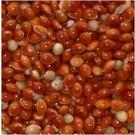 Red Millet Caged Bird Seeds