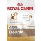 Royal Canin Beagle Adult