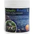 GlasGarten Salty Shrimp Sulawesi Mineral Eight Five