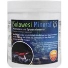 Salty Shrimp Sulawesi Mineral Seven Five