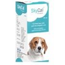 Skyec SkyCal Syrup