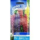 Suttons Lupin Perennial Seeds